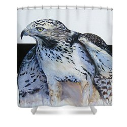 Remembering Blanco Shower Curtain