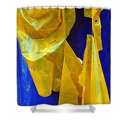 Remnant Shower Curtain by Lauren Leigh Hunter Fine Art Photography