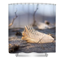 Remnants Of Icarus Shower Curtain by Bill Pevlor