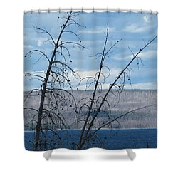 Remnants Of The Fire Shower Curtain by Laurel Powell
