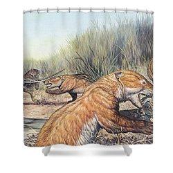 Repenomamus Mammals Hunting For Prey Shower Curtain