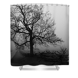 Repose In Mist Shower Curtain by David Rucker