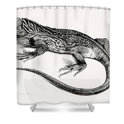 Reptile Shower Curtain by English School