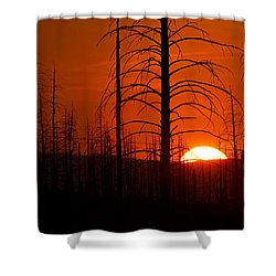 Requiem For A Forest Shower Curtain by Jim Garrison