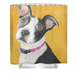 Rescued Pit Bull Shower Curtain