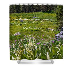 Rest For The Soul Shower Curtain by Lynn Bauer