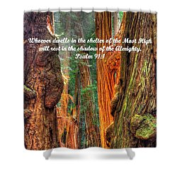 Rest In The Shadow Of The Almighty - Psalm 91.1 - From Sunlight Beams Into The Grove At Muir Woods Shower Curtain
