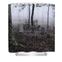 Shower Curtain featuring the photograph Rest by Laura DAddona