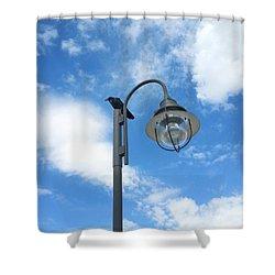 Rest Stop For The Harbinger Shower Curtain