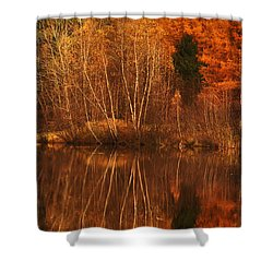 Restes D'automne Shower Curtain by Aimelle