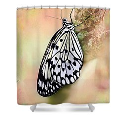 Restful Butterfly Shower Curtain by Sabrina L Ryan