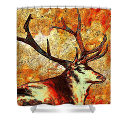 Resting Elk Shower Curtain by Jack Zulli