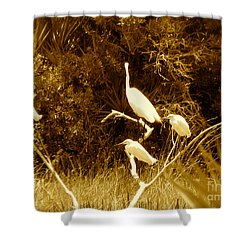 Resting Flock Sepia Shower Curtain