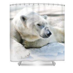 Resting Shower Curtain by Karol Livote