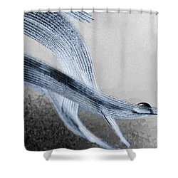 Resting On A Feather Shower Curtain by Bob Orsillo