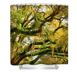 Resurrection Fern Shower Curtain by Carla Parris