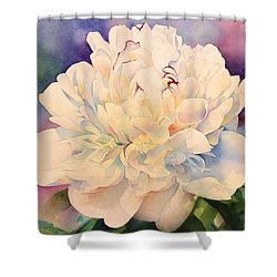 Retro Petals Shower Curtain