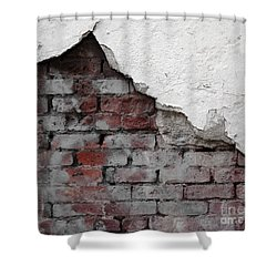 Revealed Shower Curtain by Ethna Gillespie