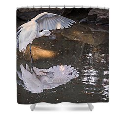 Shower Curtain featuring the photograph Revealed Landscape by Kate Brown