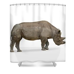 Shower Curtain featuring the photograph Rhinoceros by Charles Beeler