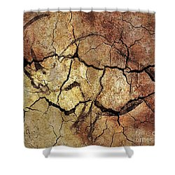 Rhinoceros From Chauve Cave Shower Curtain