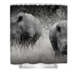 Rhinos Shower Curtain by Ramona Johnston
