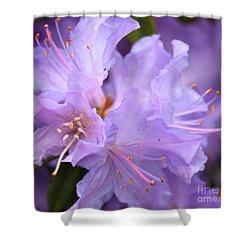 Rhododendron Flower Shower Curtain