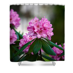 Rhododendron Shower Curtain by Jouko Lehto