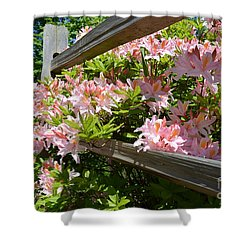 Rhododendrons In Tumwater Falls Park Shower Curtain