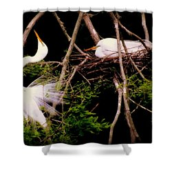 Rhythm Of Nature Shower Curtain by Karen Wiles