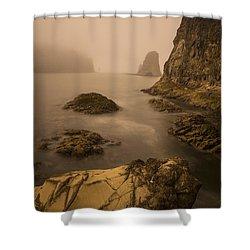 Rialto Beach Rocks Shower Curtain