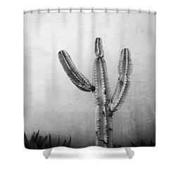 Ribbing Shower Curtain