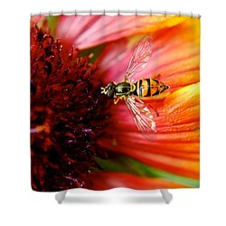 Rich Reward Shower Curtain by Frozen in Time Fine Art Photography