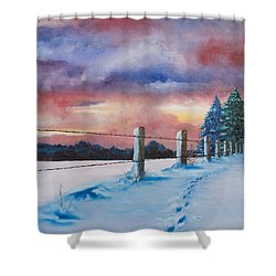 Rich Wintertide Shower Curtain