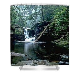 Ricketts Glen Falls 016 Shower Curtain