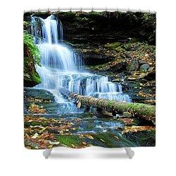 Ricketts Glen Hidden Waterfall Shower Curtain