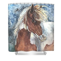 Pinto Pony Shower Curtain