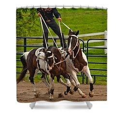 Ride Them Cowboy Shower Curtain by Karol Livote