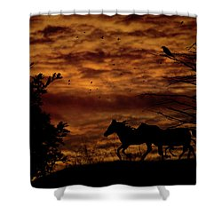 Riding Into The Night Shower Curtain by Diane Schuster