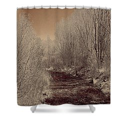 Rio Taos Bosque Iv Shower Curtain