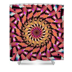 Rippled Source Kaleidoscope Shower Curtain
