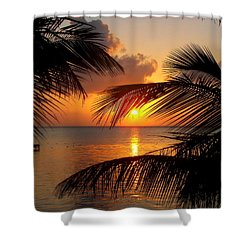 Rise And Behold Shower Curtain by Karen Wiles
