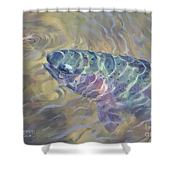 Rainbow Rising Shower Curtain by Rob Corsetti