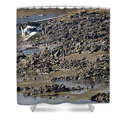 River Flying Shower Curtain by Paul Job