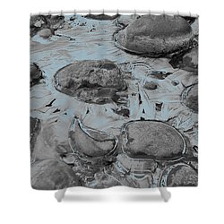 River Ice Blue Shower Curtain