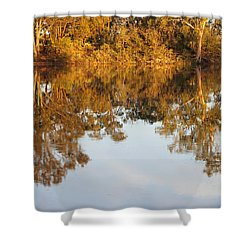 River Murray Reflections Early Evening Shower Curtain by Carole-Anne Fooks