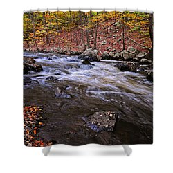 River Of Color Shower Curtain by Dave Mills