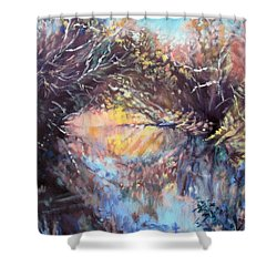 River Passage Shower Curtain