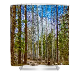 River Run Trail At Arrowleaf Shower Curtain