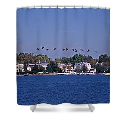 Riverfront Geese Shower Curtain by Skip Willits